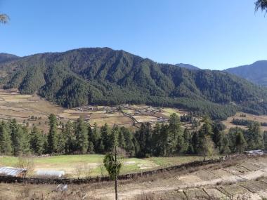 voyage-bhoutan-route-pobjike-1-copie