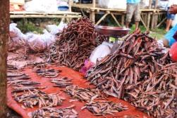 (3) voyage-indonesie-waitabula marché (10)