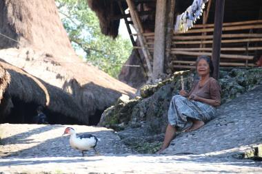 voyage-indonesie-tarung village (10)