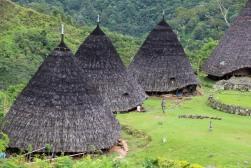 voyage-indonesie-waerebo village (19)